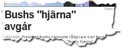 """Bushs """"hjärna"""" avgår"""